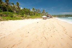 BALI- MAY 8:  Balangan Beach is one of the surfing beaches on th Stock Image
