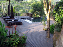 Bali. Openlucht pool in wildernis Stock Foto's