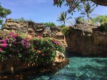 Bali-Pool lizenzfreie stockbilder