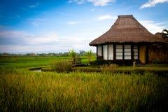 Bali resort Stock Photos