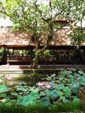 Bali restauracja w pawilonie, lotosowy staw obraz royalty free