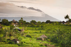 Bali Rice Fields. The village of Sidemen, in east Bali, Indonesia, boasts some of the most beautiful and dramatic rice fields in all of Asia. Mt. Agung, a Stock Photo