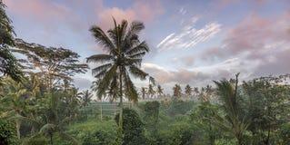 Bali-Stadt von Göttern lizenzfreies stockfoto