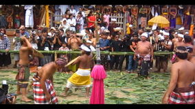 Bali Traditional Pandanus War stock video footage