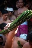 Bali Traditional Pandanus War. Bali Pandanus War is traditional culture from karangasem. Bali Local people used to call Mekaré-kare stock photo