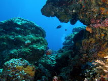 Bali undersea scenery Stock Photo