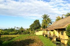 Bali-Urlaubshotellandhaus mit Reis fängt Ansicht auf Lizenzfreies Stockfoto