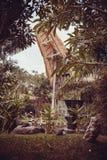 Bali-Vogelpark Lizenzfreies Stockfoto