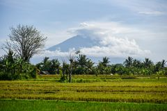 Bali-Vulkaneruption Stockbild