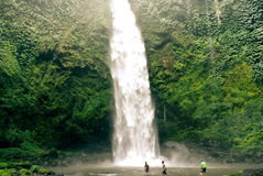 Bali-Wasserfall Lizenzfreie Stockfotos