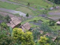bali zona dell'Indonesia!!! Immagini Stock Libere da Diritti