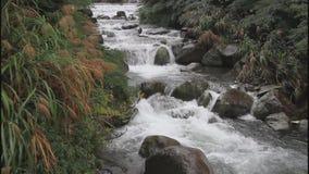 Balian小河在台湾 股票录像
