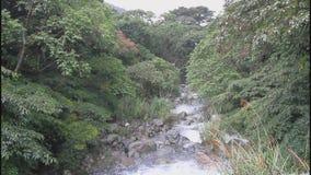 Balian stream in Taiwan stock footage