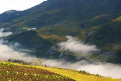Baliem Valley in Papua Province. The slopes of Baliem Valley in the morning, Papua Province, Indonesia Stock Images