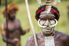 Dani tribesman at the annual Baliem Valley Festival. Baliem Valley, West Papua/Indonesia - August 9, 2016: Portrait of a Dani tribesman at the annual Baliem stock photos