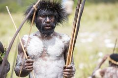 Dani tribesmen at the annual Baliem Valley Festival. Baliem Valley, West Papua/Indonesia - August 9, 2016: Portrait of a Dani tribesmen at the annual Baliem royalty free stock photography