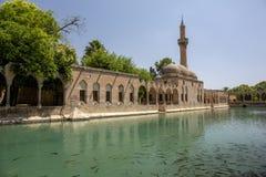 Balikligol Halilurrahman moské Sanliurfa, Turkiet Arkivbilder