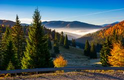 Balileasa valley of Apuseni mountains. Gorgeous autumn sunrise with glowing fog among the spruce forest. Bihor mountain in the distance. beautiful travel Stock Photo