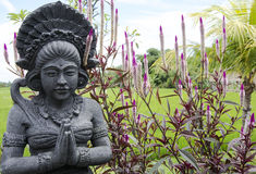 Balinees Hindoes Standbeeld Stock Afbeelding