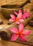 Balinese-Badekurort Lizenzfreies Stockbild
