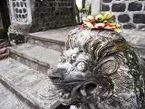 Balinese canang Sari die op het hoofd van een standbeeld van de steenleeuw aanbieden Stock Afbeelding