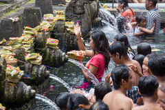 Balinese families come to the sacred springs water temple of Tirta Empul in Bali, Indonesia to pray and cleanse their soul Royalty Free Stock Images