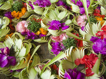 Balinese flowers Stock Images