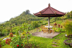 Balinese garden Royalty Free Stock Photos