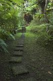 Balinese Garden Path Royalty Free Stock Images