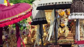 Balinese heilige ceremonie stock footage