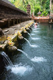 Balinese holy springs in Tirta Empul temple. Holy spring water in Tirta Empul temple, Bali, Indonesia Royalty Free Stock Photography