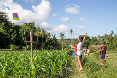 Balinese kids with kites Stock Photography