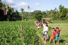 Balinese kids with kites Royalty Free Stock Image