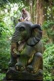 Balinese long-tailed monkey at the Monkey Forest Sanctuary, Ubud Royalty Free Stock Image