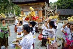 Balinese makende voorbereiding voor het bidden Stock Foto's