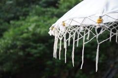 Balinese paraplu Stock Afbeelding