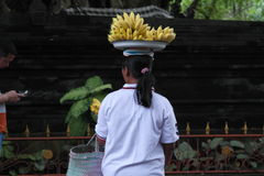 Balinese Prayer in Ulun Danu Temple Stock Photography