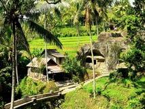 Balinese rice field6. Balinese rice field and stone homes in gunung Kawi at Bali Royalty Free Stock Photography