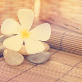 Balinese Spa Royalty Free Stock Photography