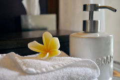Balinese Style Toiletries Stock Photography