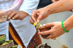 Balinese Tirta santamente Fotografia de Stock Royalty Free