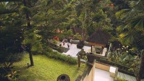 Balinese vrouwen die op balkon in wildernis dansen stock videobeelden