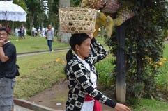 Balinese Woman Asia, Indonesia Stock Image