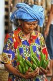 BALINESE WOMAN, INDONESIA Royalty Free Stock Photos