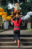 Balinese woman in traditional clothes  carrying ceremonial offerings on her head Royalty Free Stock Photos