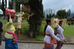 Balinese Women Asia, Indonesia Stock Images