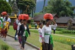 Balinese Women Asia, Indonesia Stock Photo