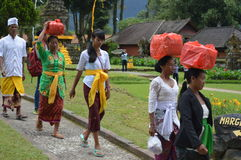 Balinese Women Asia, Indonesia Royalty Free Stock Photos