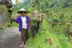Balinese worker Royalty Free Stock Image