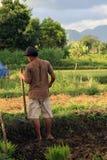 Balinesebonde med skäran Arkivbilder